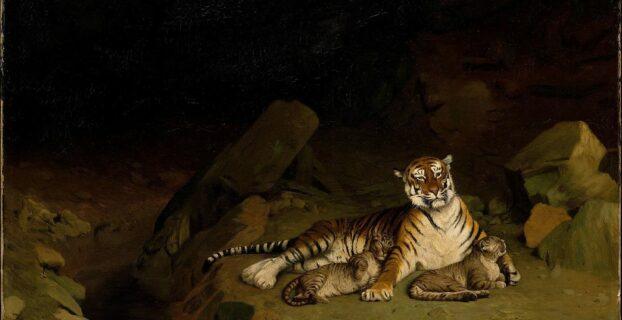MythBlast | The Tiger King